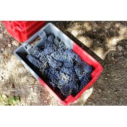 Bac gerbable allibert emboîtable classique 60 litres gris rouge